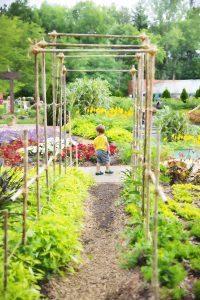 Tuin ontwerp maken